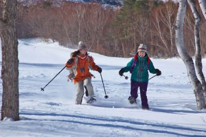 Enjoy-winter-programmes-in-beautiful-nature-of-Karuizawa-2