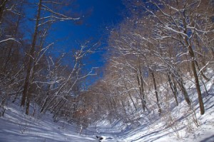 Enjoy-winter-programmes-in-beautiful-nature-of-Karuizawa-3