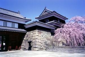 Ueda-Castle-Cherry-Blossom-Festival-4