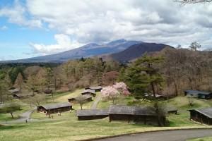 cherry-blossoms-karuizawa-prince-hotel-east-2